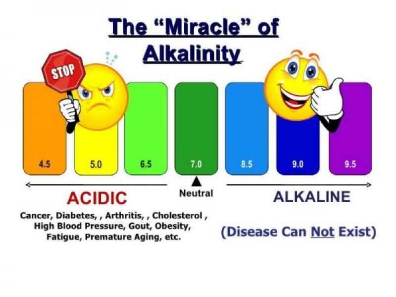 alkali-su.jpg